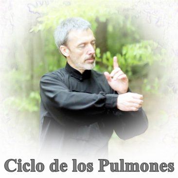 Ciclo de los Pulmones
