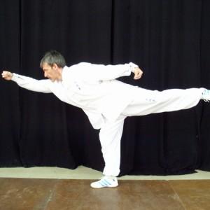 Pose con un movimiento de la forma Luohan Gong